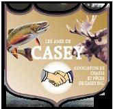 Les amis de Casey